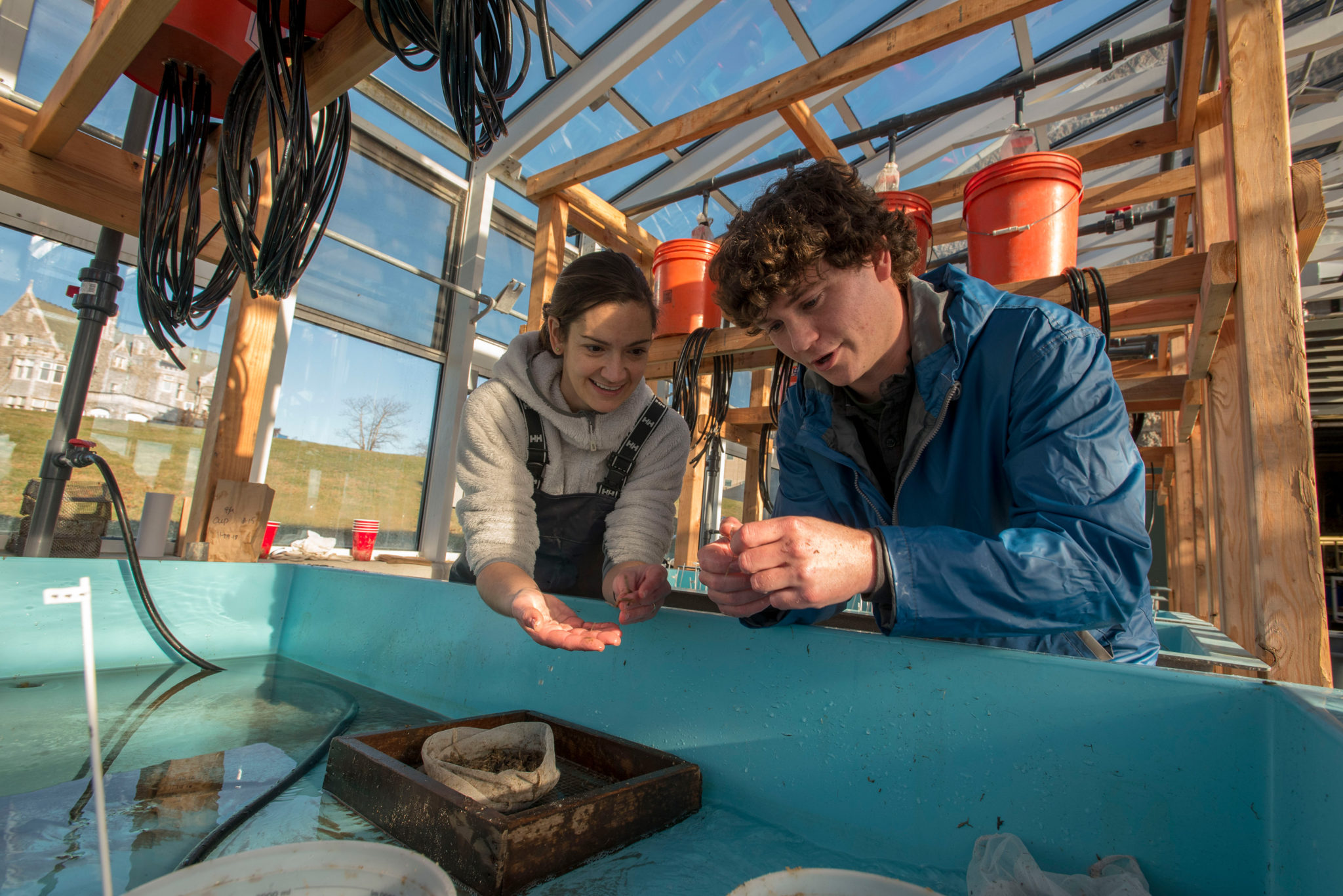 Sean Ryan Ph.D. student and Assistant Professor Catherine Matassa working on a research project at UConn Avery Point